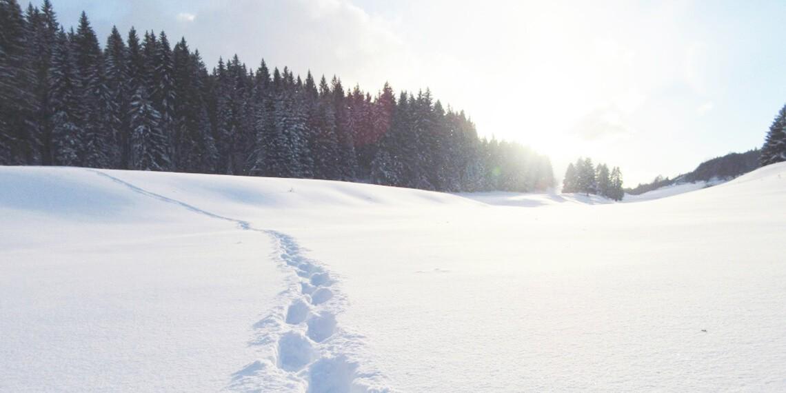 Boost hivernal : le Jura en raquettes