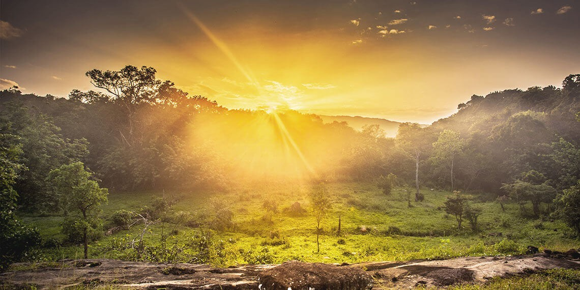 Oasis paradisiaque au Sri Lanka