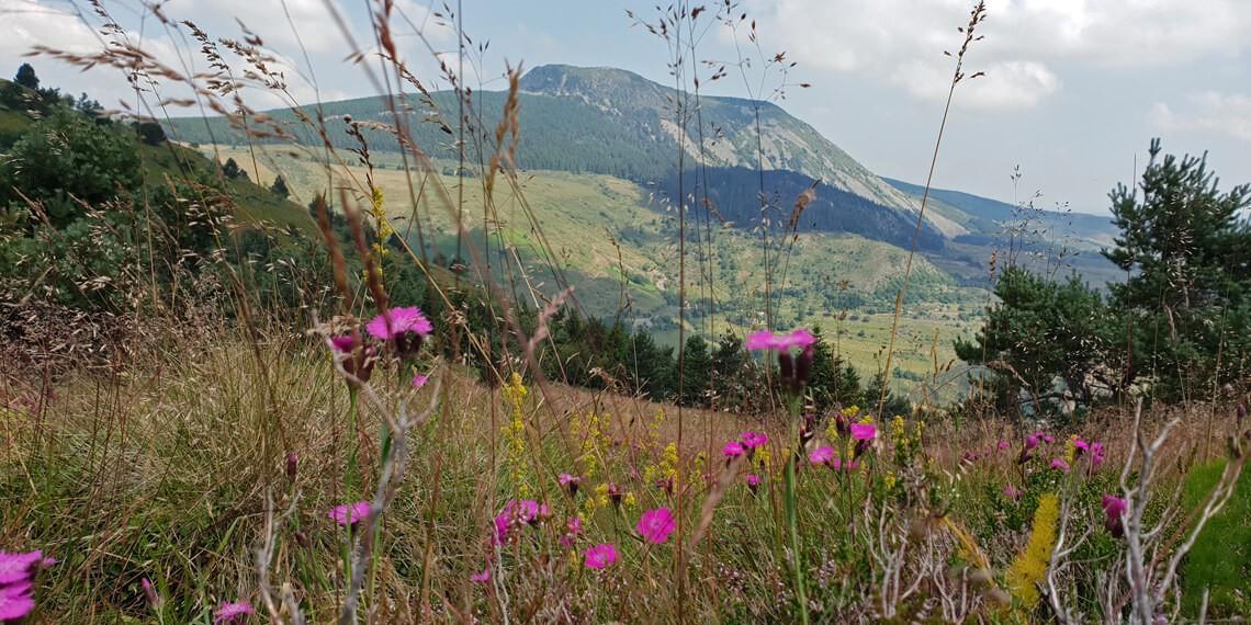 Chalet perché montagnes Ardèche labellisé Out Of Reach