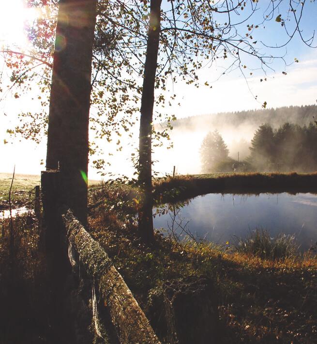 Lac déconnecté