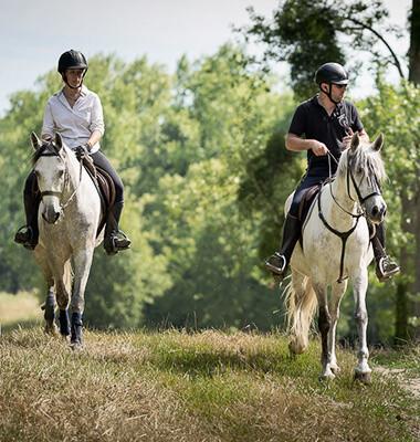 Randonnée à cheval dans le Bois de Rambouillet, par Out Of Reach
