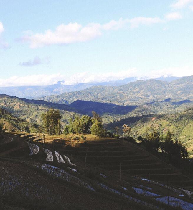 Paysage de collines déconnecté