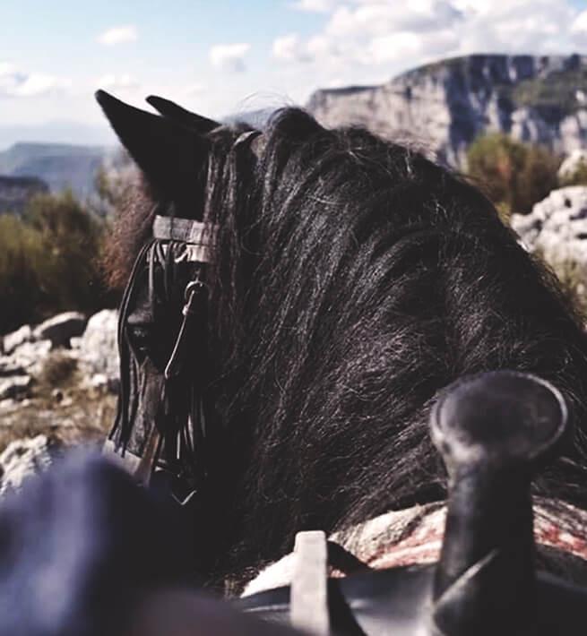Déconnexion à cheval
