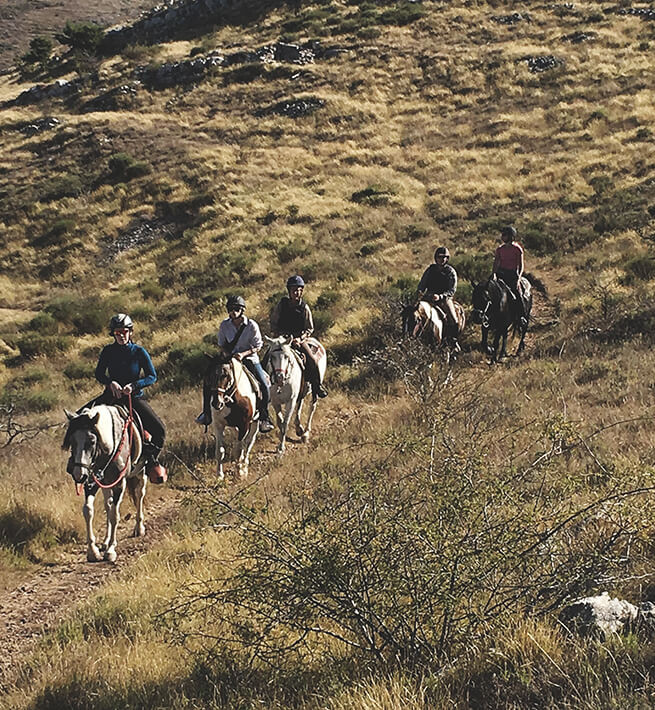 Balade à cheval en mode digital