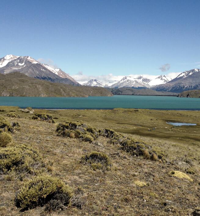 Paysage déconnecté de Patagonie