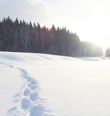 Boost hivernal : le Jura en...