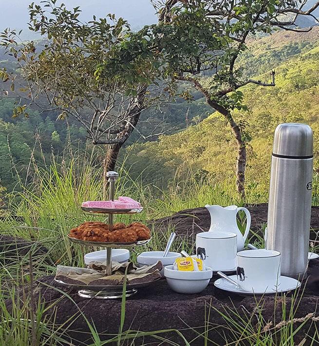 Oasis paradisiaque au Sri Lanka - 1
