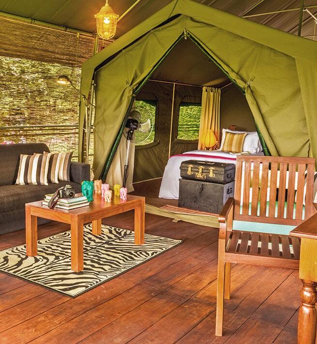 Oasis paradisiaque au Sri Lanka - 3