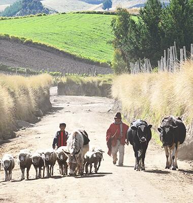 Hors du temps dans les Andes