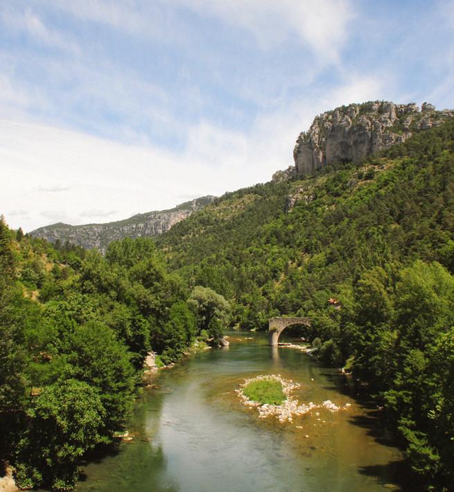 Plongeon nature entre pierre et rivière - 1