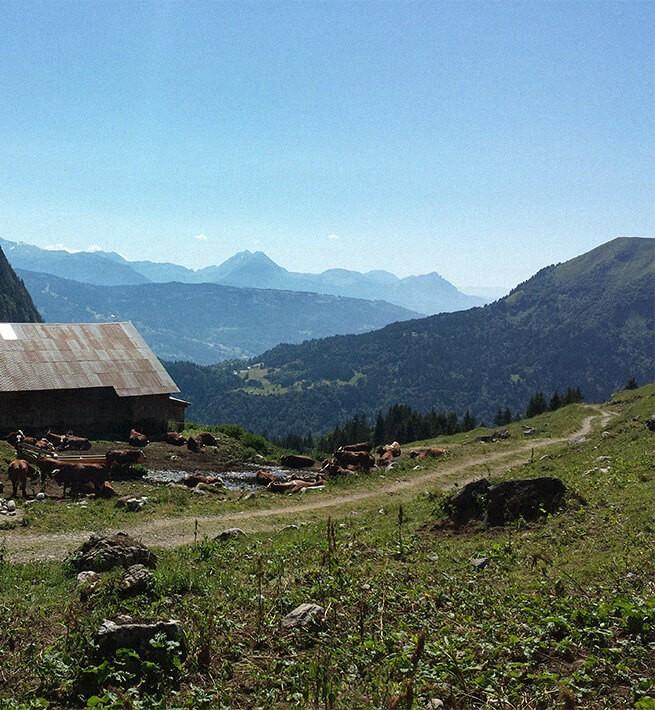 Randos littéraires dans les Alpes - 2