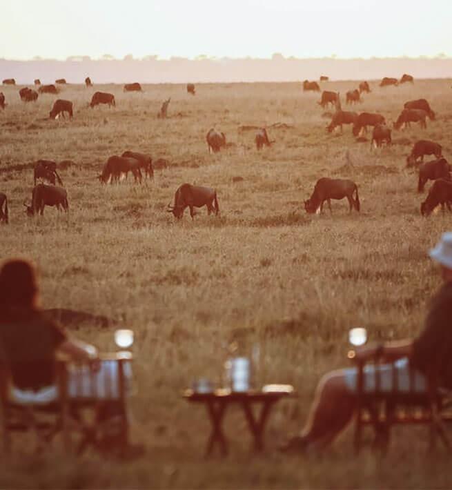 À la découverte du pays Massaï - 1