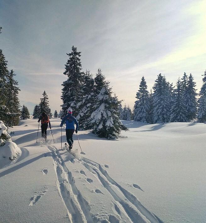 Au milieu des neiges jurassiennes - 2