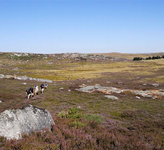 Itinérance mystique sur le haut plateau de l'Aubrac - 2
