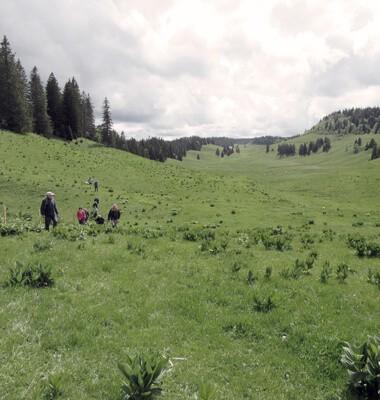Randonnées et trekking dans le Jura, labellisé Out Of Reach