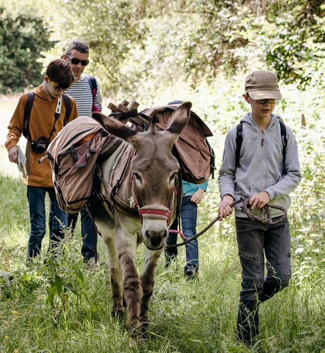 Bien âne'compagnés dans le Val de Loire - 1