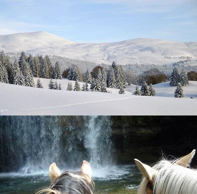Le Jura - randonnée à cheval h