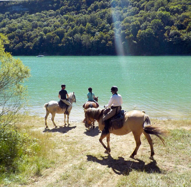 Le Jura - randonnée à cheval l