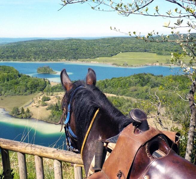 Randonnée à cheval dans le Jura,