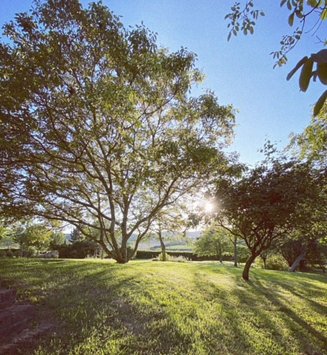 Jardin du Manoir normand