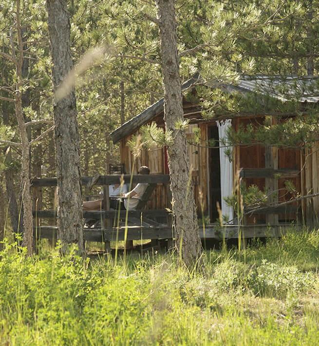 Cabane bois forêt Baronnies